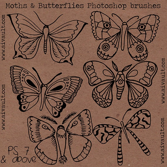 INSTAND DOWNLOAD Moths and butterflies hand drawn doodled photoshop brushes- Photographer use , scrabooking and digital art