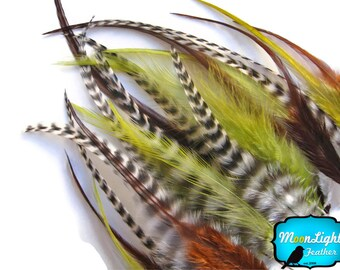 Mix Hair Feathers, 2 Dozen - SHORT OLIVE MIX Grizzly Rooster Hair Extension Feathers : 564