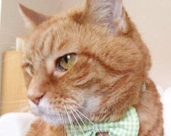Seersucker Breakaway Collar For Cats