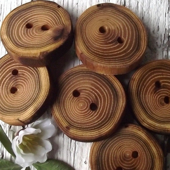 Wood Buttons - 6 Wooden Locust Tree Branch Buttons - 1 5/8 x 1 1/2 inches, 2 holes, For Journals, Pillows, Purses, Knitting and Crochet