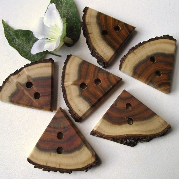 Wood Tree Branch Buttons - 6 Natural Wood Triangle Buttons - 1 1/2 x 1 1/4 inches, 2 holes, Perfect for Fiber Artists, Journals, Purses