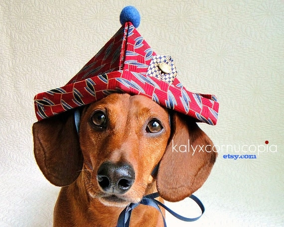 Red & Blue New Years Sailor Hat for Happy Dachshunds
