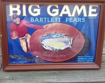 Vintage Big Game Brand Bartlett Pears Framed Picture