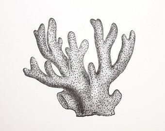 Branch Coral Letterpress Art Print
