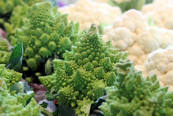 Roman Cauliflower at the Jean-Talon Market