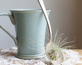 Air Plant, Tillandsia, In Old Spoon, Upcycled Eco Gift Idea