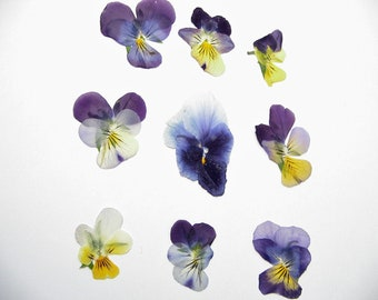 Imperfect Small Pressed Pansies Crafting Supplies