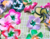 Mini Polymer Clay Plumeria Frangipani Flower Beads Mix... 20pcs