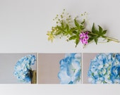CUSTOM LISTING FOR cjdevries - Photo notecards - Blue Hydrangea