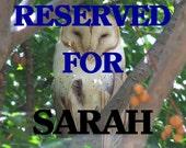 RESERVED FOR SARAH - Exotic Bubinga -Texas Ebony and Caribbean Rosewood Premium Laser Engraved Guitar Pick