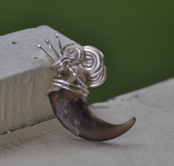 Silver Wolf - Real Large Wire Wrapped Wolf Claw Pendant