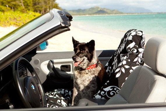 Large Front Car Seat Cover - Kula