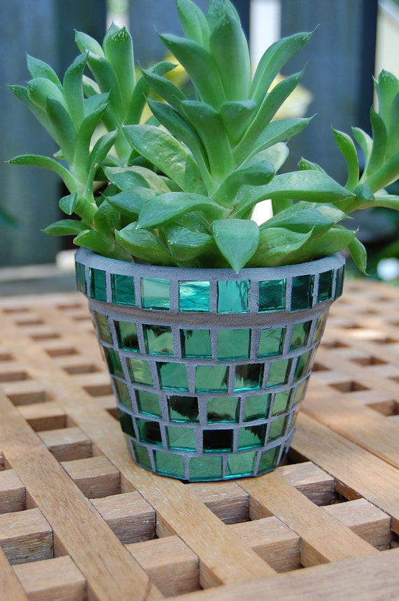 Growing Green -  Glass Mosaic Flower Planter with Mosaic Tray