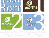 Modern Baby Boy Month Stickers - Baby Shower Gift