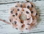Dot You'd Never Ask- polka dot blush chiffon bloom with feather and pearl accent