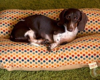Gold Multi-color dots Mellow Yellow  Deluxe Bunbed Dog bed for Dachshunds or other small dogs