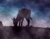 Grazing Deer Wildlife photography silhouette animal surreal twilight metallic 8 x 10 print violet blue misty dusk
