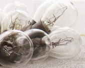 set of 7 ... Old Light Bulbs ...