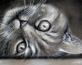 CUSTOM Cat Drawing -  From your photo - 5x7 -  Realistic Hand drawn fine art - Charcoal portrait - Feline, kitten, pet portrait