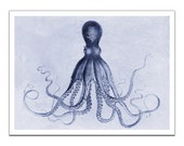 Octopus Lord Bodner  on Premium Archival Matte Paper - 32x24