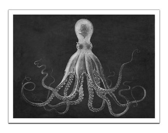 Octopus Lord Bodner  on Premium Archival Matte Paper - 48x36