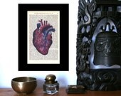 Boom Boom Anatomical Heart Art Print on Antique 1896 Dictionary Book Page
