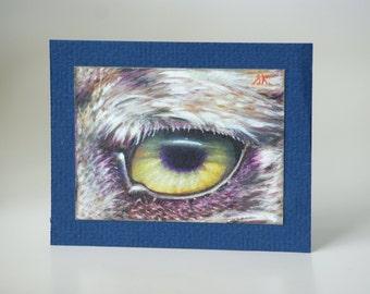 Wisdom - Eye Portrait in Colored Pencil