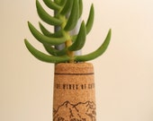 Succulent Cork Magnet, Mountain Pine