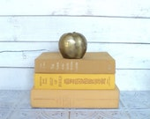 Mustard Yellow Books FAT Instant Library Collection Vintage Books by Color Photography Props Decorative Books Ochre Autumn, Fall