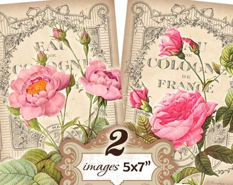 Victorian Vintage Roses french background 5x7 inch  Greeting cards Shabby chic paper Scrapbook (349) Buy 3 - get 1 free