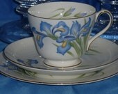 Shelley Fine Bone China  RARE BLUE IRIS Trio - Cup/Saucer/Bread Plate &Incredibly Gorgeous