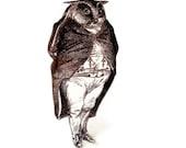Owl Brooch Victorian Illustration Tuxedo Anthropomorphic Black and White Fantasy Animal
