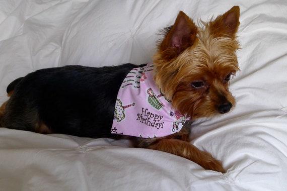 HAPPY BIRTHDAY Dog Bandana - L