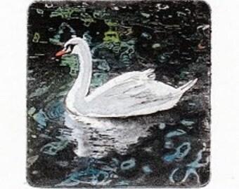 White Swan etching
