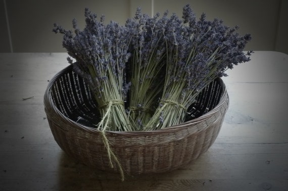 Lavender Bundle, Rustic, from Garden of Simples