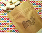 Sweet Lil Soap Bits with Goat's Milk - Natural Cloth Wipe Solution - Choose your scent - 24 bits