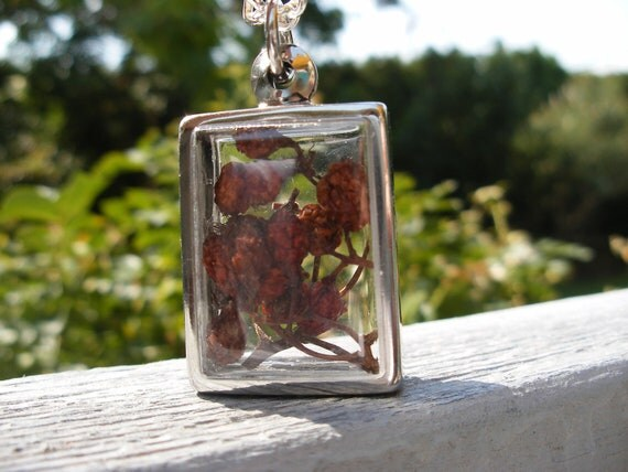 Scottish Rowan Berry Protection Necklace Locket Red