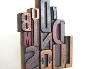 Body, Mind, Soul - 12 Vintage Letterpress Wood Type Alphabets Collection - MV55