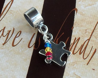 Sterling Silver Asperger's Syndrome, PDD, Autism Awareness Charm Bead, European Style