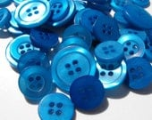 20 Bluejay Rimmed Round Medium Buttons Size 11/16""