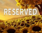 Reserved for Diana Davis