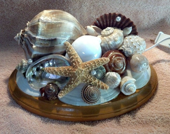 SeaShell Table Night Light 22 -- The Lightning Whelk II -- For the Guys