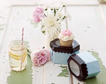 5 (single) cupcake boxes