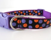 50% OFF Purple and Orange Halloween Dots 1 Inch Dog Collar on Purple