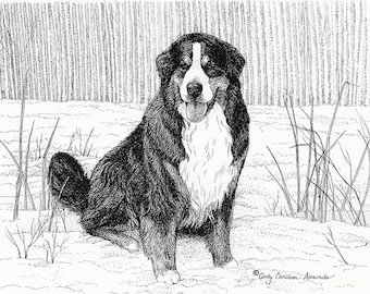 Pen and ink Bernese Mountain Dog print by Cindy Alvarado