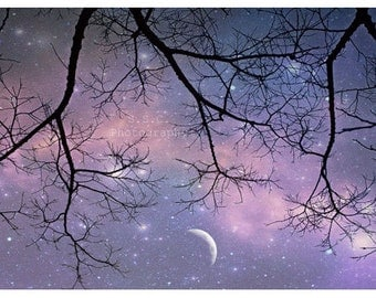 "Starry Night Photo. Tree Photo. ""Twinkle"" . Dreamy. Surreal. Moon. Stars. Branches. Purple. Silver. Pink. Sunset. Pretty"