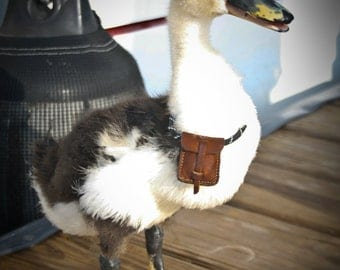 Duck Survival Pouch