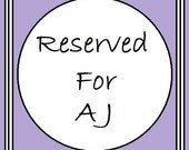 Reserved for A J Sea Witch Crocheted Shawl