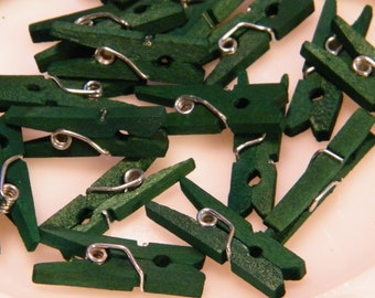 CLEARANCE Sale Tiny Wooden Clothespins - 25 Deep Emerald Green - Hand Dyed - Woodland Garden - Wedding Wish Trees -Limited Edition