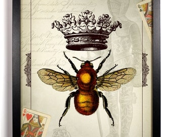 The Queen Bee Home Kitchen Nursery Bath Dorm Office Decor